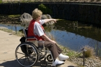 Outings In A Wheelchair